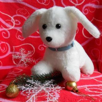 Снежная Собачка