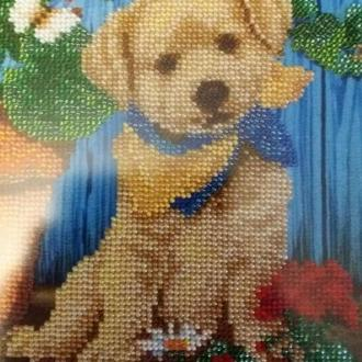 Картина бисером собака