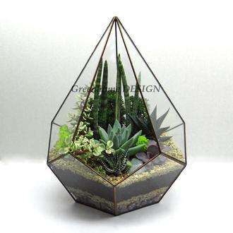 "Геометрический флорариум ""Пирамида"""