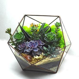 """Геометрический флорариум """"Икосаэдр"""" (диаметр -25 см)-оригинальный подарок!"""