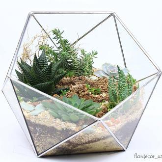 Флорариум Basket maxi