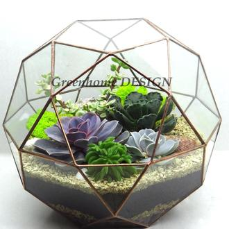 """Геометрический флорариум """"Глобус"""" (с живыми растениями)-эффектный и стильный подарок"""