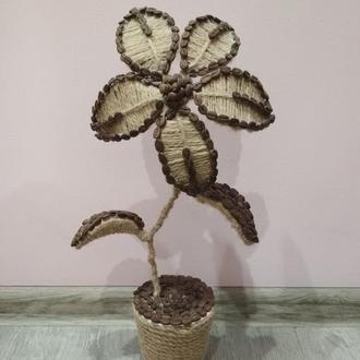Цветок ручной работы из кофейных зёрен.
