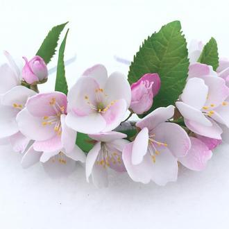 ободок ′Яблоневый цвет′