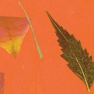 Бумага ручной работы URSUS А4 80г/м оранжевая с вкраплениями Роза UR-14132202R