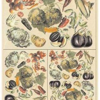 Декупажная карта-бумага 50*70см 90885 Овощи