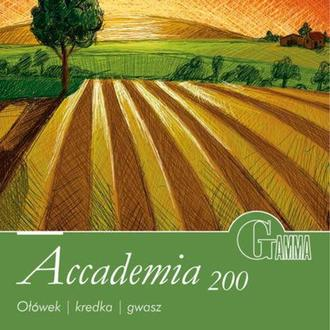 Бумага-склейка для рисования Fabriano (Gamma) 16*22,5 см 10л. 200г/м2 Accademia A2001622K10