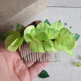 Гребень с зеленой гортензией