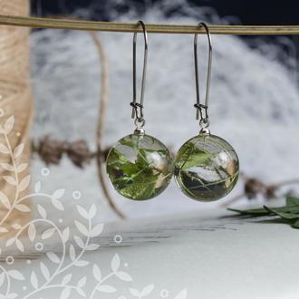 Серьги-шарики из ювелирной смолы с натуральными растениями
