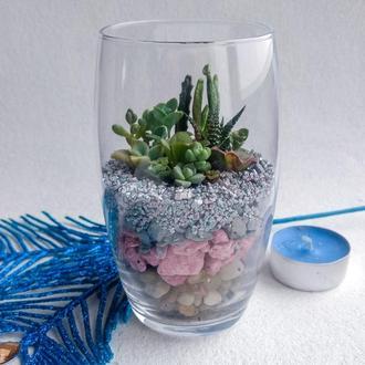 """Мини-флорариум """"валентинка"""""""