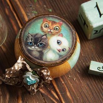 шкатулка котята