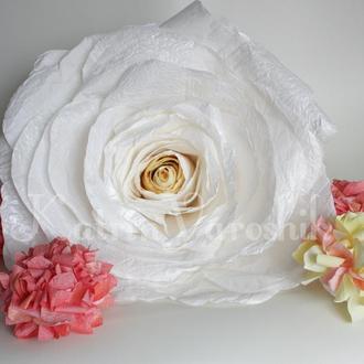 Ростовая роза белая