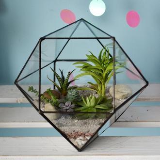 Композиция из суккулентов в геометрическом флорариуме