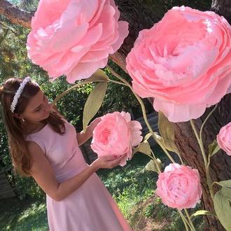 Большие цветы из бумаги. Ростовые цветы.