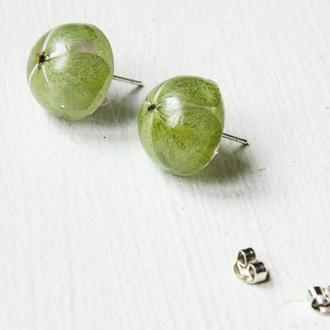 Серьги-гвоздики с зелёными гортензиями, зелёные цветы, ручная работа, эпоксидная смола, подарок