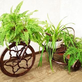 Кованная подставка под цветы ручной работы - Велосипед