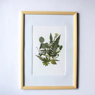 Картина з пресованих рослин