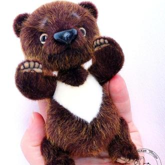 Гималайский медвежонок Гвидо