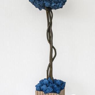 Дерево из стабилизированного мха Blue