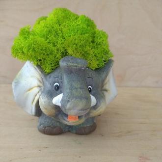 Счастливый слоник