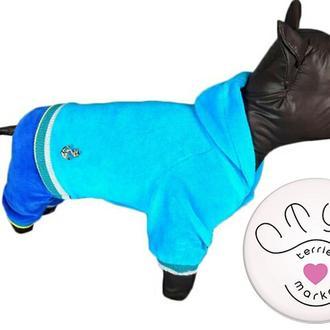 Велюровый костюм с капюшоном для собак