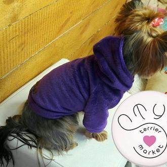 Плюшевые свитшоты для собак