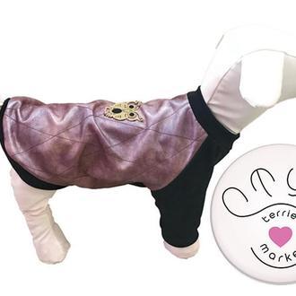 Стильный свитшот из эко кожи для собак