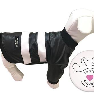 Куртка из эко кожи для собак