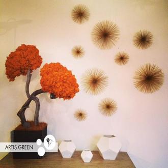 Дерево со стабилизированным мхом Orange
