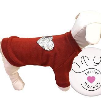 Ангоровые свитера для собак
