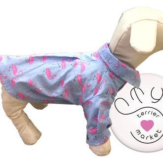 Рубашки для собак. Яркая рубашка с принтом фламинго