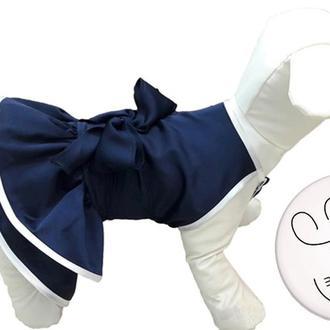 Шелковые платья для собак
