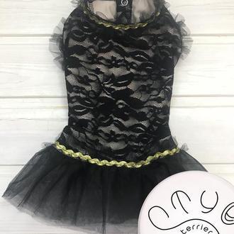 Гепюровое платье для собак