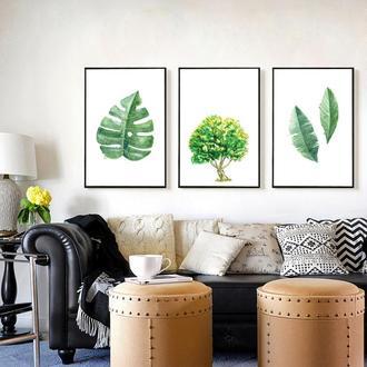Графические постеры Ботаника