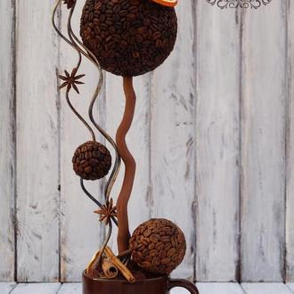 Кофейное дерево «Трио»