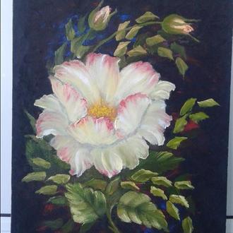 """Картина маслом """"Белая уксусная роза"""", оргалит 40×30 см."""