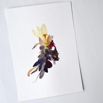 Флористичний колаж із живих засушених квітів