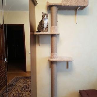 Настенный дом для кота - когтеточка, дряпалка.