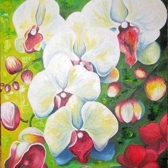"""Картина маслом """"Орхидея"""""""