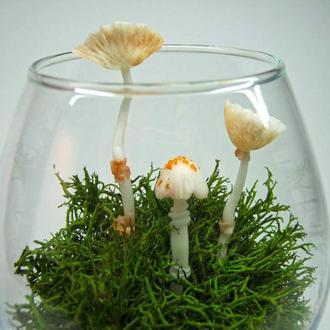 Стабилизированный мох (ягель) и грибы из полимерной глины