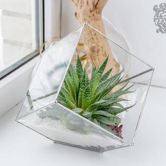 Флорариум Куб 20х20 см