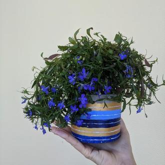 Кашпо / горщик для квітів