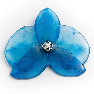 Брошь с голубой орхидеей