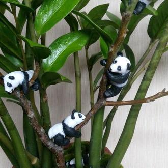 Панды, пандочки...