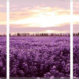 """Раскраска по номерам Триптих """"Лавандовое поле"""""""