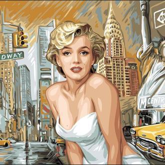 Картина для рисования Турбо Прекрасная Мерлин  40 х 50 см