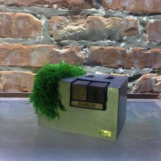 Декор Сalendar & Moss