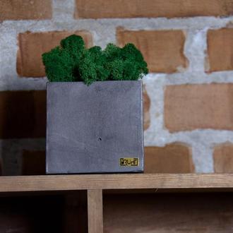 Декор Cube & Mos / gray