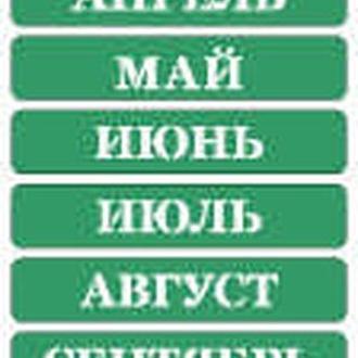 Трафарет на клеевой осн. №02, Месяцы, русский печатный