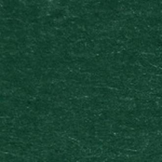 Бумага для дизайна Folia Tintedpaper A4 №58 хвойно зеленая 130 г/м2 21 х 29.7 см